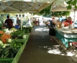 Bauernmarkt Hasnerplatz